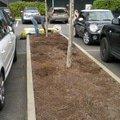 Obnova zahonu na parkovisti obnova provizorniho chodniku prum 2012 10 09 13 02 42 125