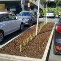 Obnova zahonu na parkovisti obnova provizorniho chodniku prum 2012 10 09 13 31 39 194