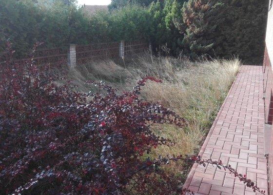 Dobrý den, potřebuji posekat zahradu o velikosti 1600 m2. Zahrada nebyla 1,5 roku sekaná, kvalita trávníku tomu odpovídá.