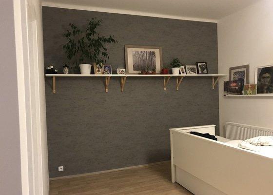 Malování bytu 35m2, tapetování 1 stěny