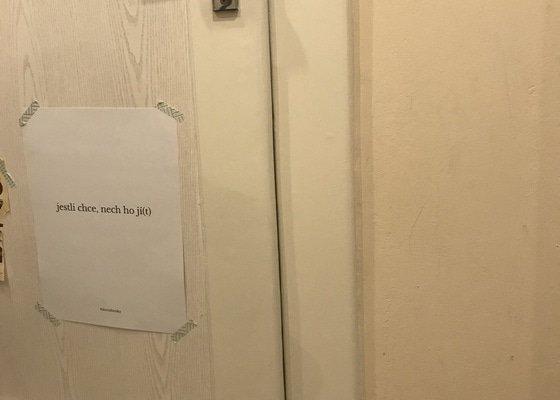 Oprava dveří a futer, případně výměna