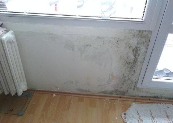 Sanace plesnivé zdi