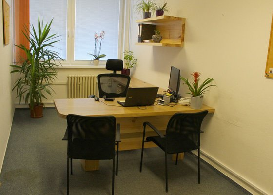 Kancelář- dub a borovice