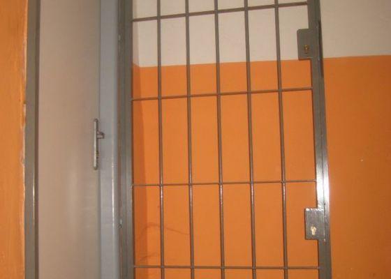 Mříž na dveře do sklepních prostor