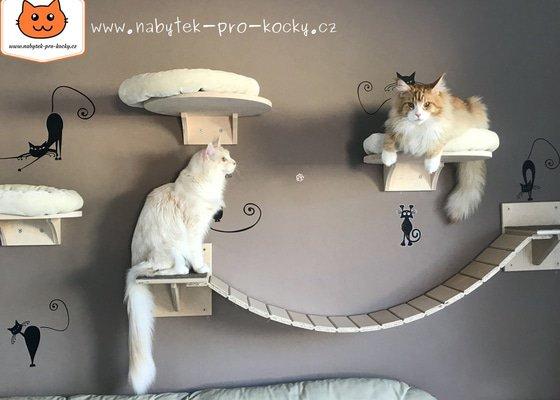 """Instalace """"kočičí stezky"""" (poliček) na panelovou stěnu"""