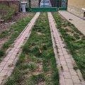 Foto vjezd - ponechat zámkovou dlažbu vjezdu - a travní porost - mlat