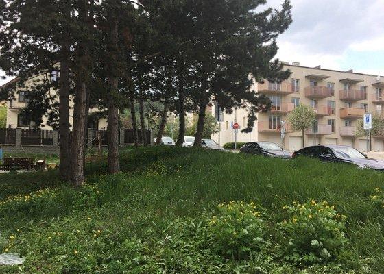 Zahradnické práce - sekání trávy 400 m2