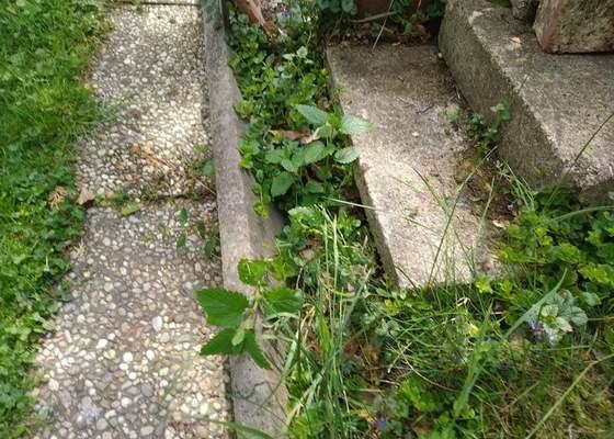 Chodníček na zahradě, cca 8 metrů