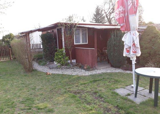 Poptávám výměnu asfaltové lepenky na zahradní chatce
