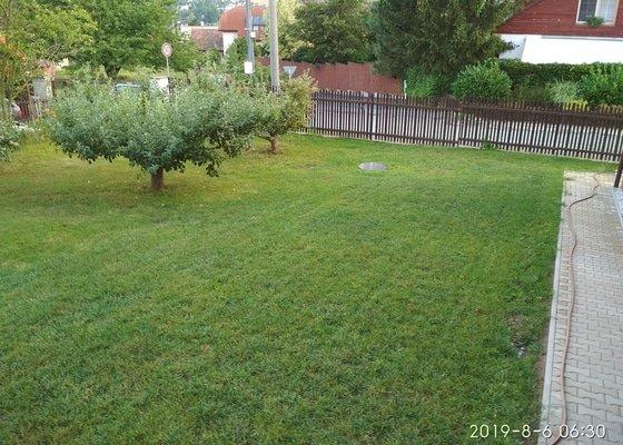 Terénní úpravy, založení trávníku