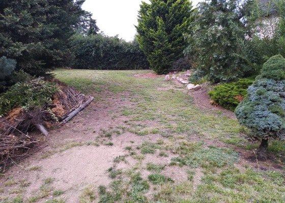 Založení nového trávníku a ostříhání živého plotu