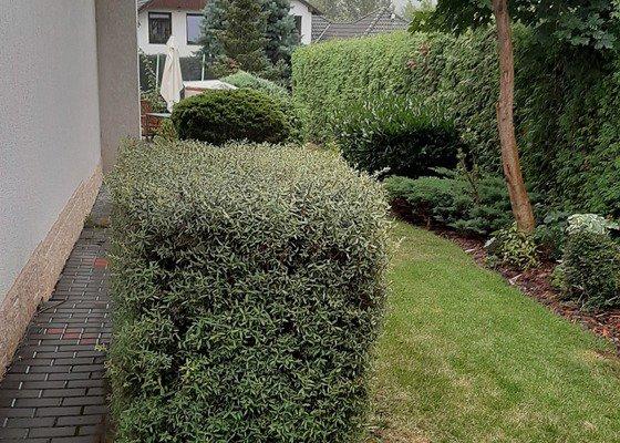 Revitalizace zahrady