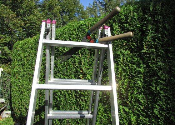 Předmětem zakázky byla úprava zeleného plotu z tůjí o výšce 2,5 m a délce  50 m