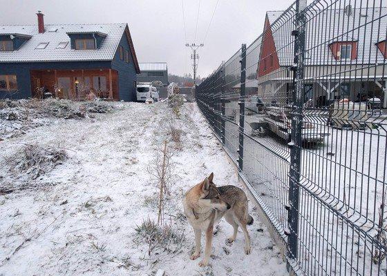 Realizace plotu odolného vůči psům
