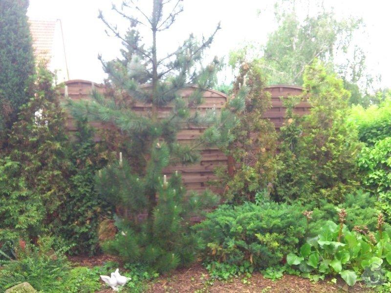 Opravy v domě a zahradě: DSC_0363