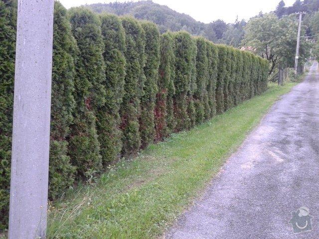 Stavbu plotu: 001