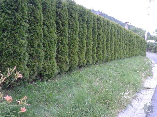Stavbu plotu: 003