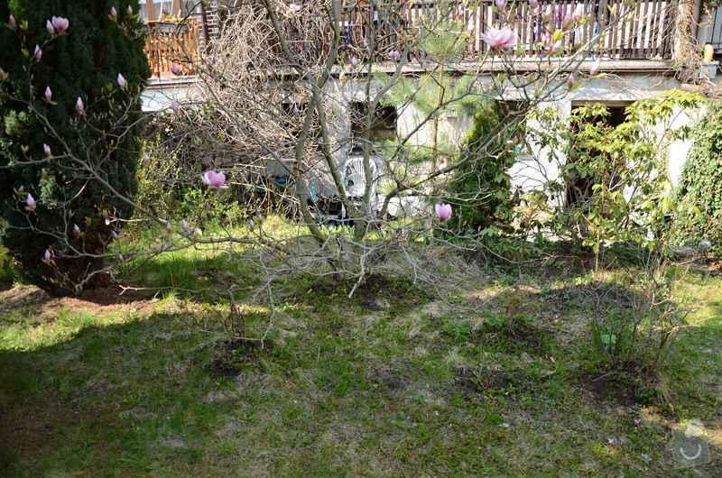 Revitalizace jezírka, skalky a záhonů v horní části zahrady: puvodni_stav_zahonu_nad_skalkou_2