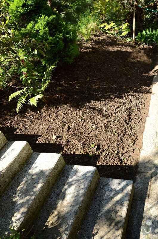 Revitalizace jezírka, skalky a záhonů v horní části zahrady: priprava_skalky