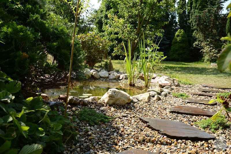 Revitalizace jezírka, skalky a záhonů v horní části zahrady: jezirko_po_revitalizaci_1