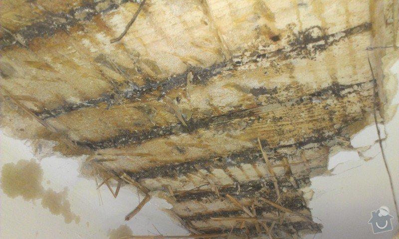 Odstranění medu od les.včel z dřevěné podlahy (med prosakuje stropem v místnosti pod podlahou.: IMAG1907