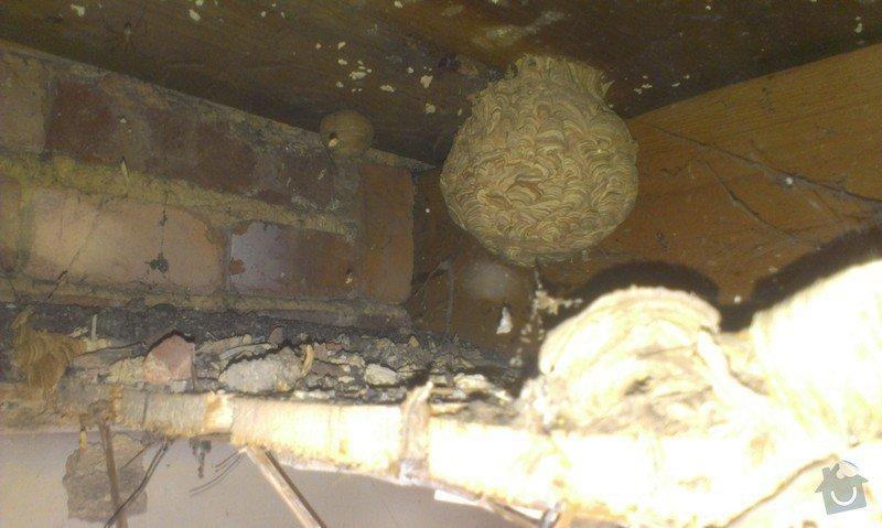Odstranění medu od les.včel z dřevěné podlahy (med prosakuje stropem v místnosti pod podlahou.: IMAG1914