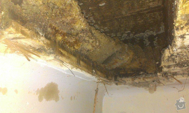 Odstranění medu od les.včel z dřevěné podlahy (med prosakuje stropem v místnosti pod podlahou.: IMAG1919