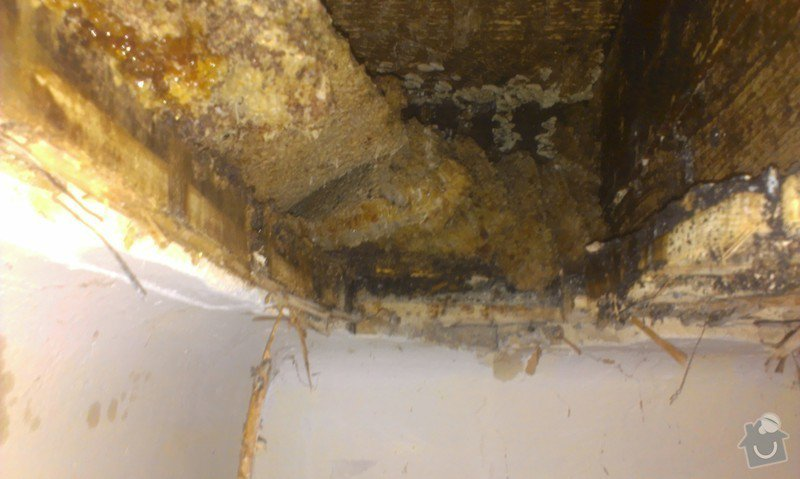 Odstranění medu od les.včel z dřevěné podlahy (med prosakuje stropem v místnosti pod podlahou.: IMAG1920