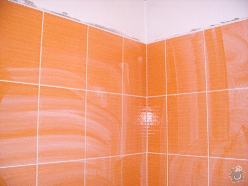 Obložení koupely: SS856734