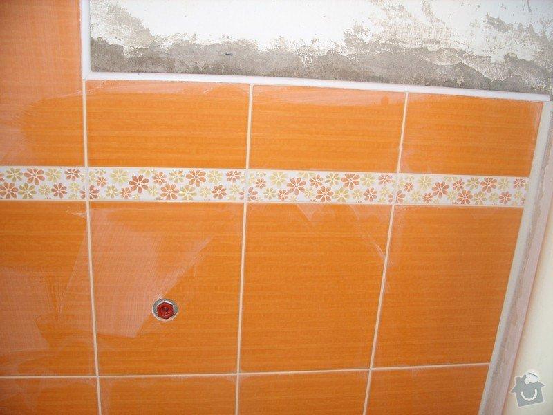 Obložení koupely: SS856742