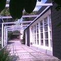 Opaleni a lakovani drevenych oken obraz023
