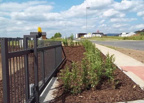 Výsadba živých plotů a zatravnění