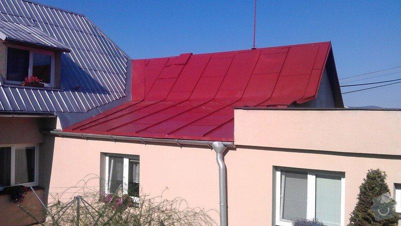 Nátěr střechy + drobné klempířské práce: IMAG0487