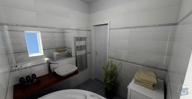 Rekonstrukce koupelny: VIZ2
