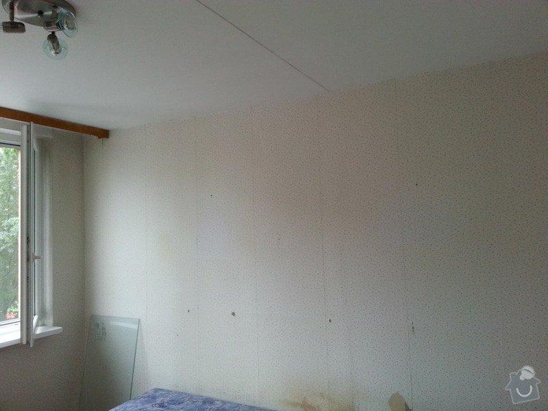 Štuky stěn a sádrokarotonové podhledy: 20130624_094343