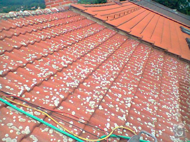 Očištění střechy od mechu: Fotografie0772