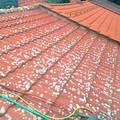 Ocisteni strechy od mechu fotografie0772