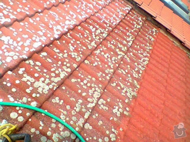 Očištění střechy od mechu: Fotografie0768