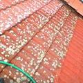 Ocisteni strechy od mechu fotografie0768