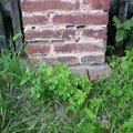 Dostavba 3m kamenne zdi oploceni oprava 2 cihlovych sloupku o zed 09 sloupek
