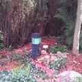 Zahradni led osvetleni kamerovy system imag2657