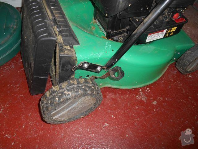 Spraveni (privareni) madla od sekacky na travu: DSCN2317