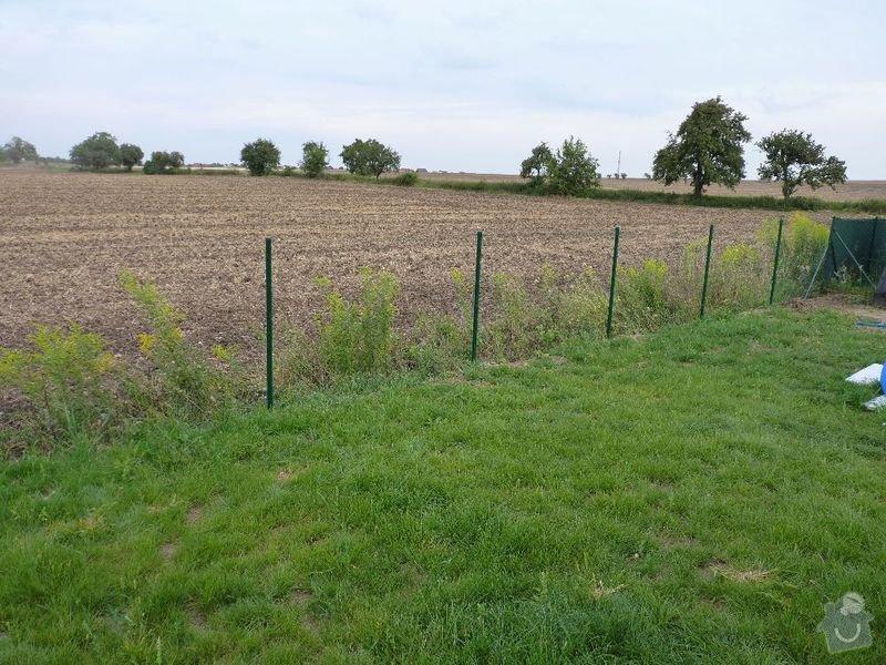 Operna zidka pod plot: image1002