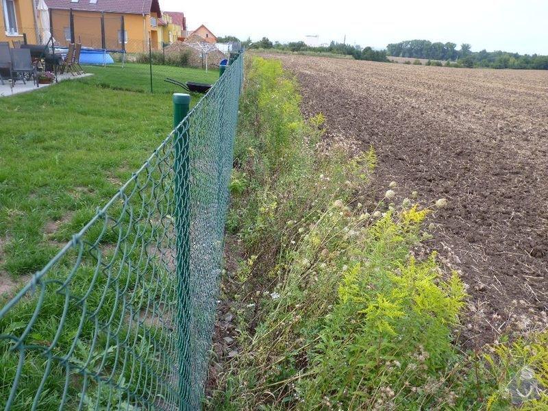 Operna zidka pod plot: image1004