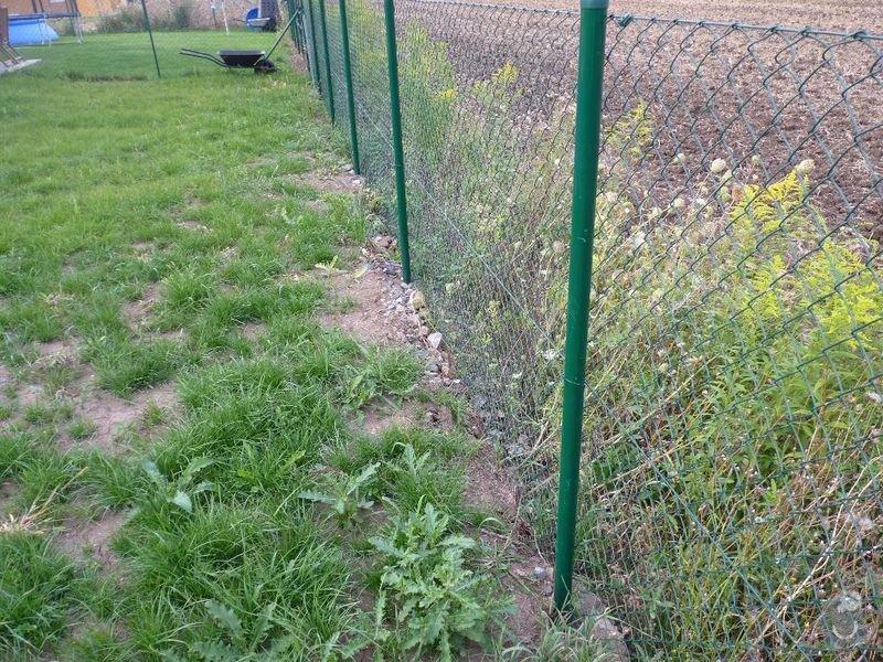 Operna zidka pod plot: image1005