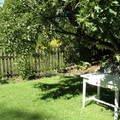 Udrzba zahrady p8191628