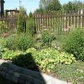 Udrzba zahrady p8191636