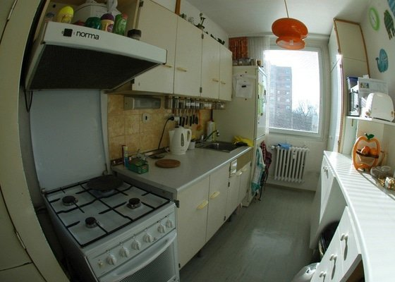 Rekonstrukce kuchyně a chodby (panelový dům, 2005)
