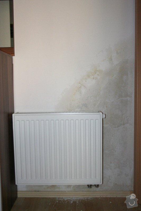 Plesnivějící stěna: IMG_7859
