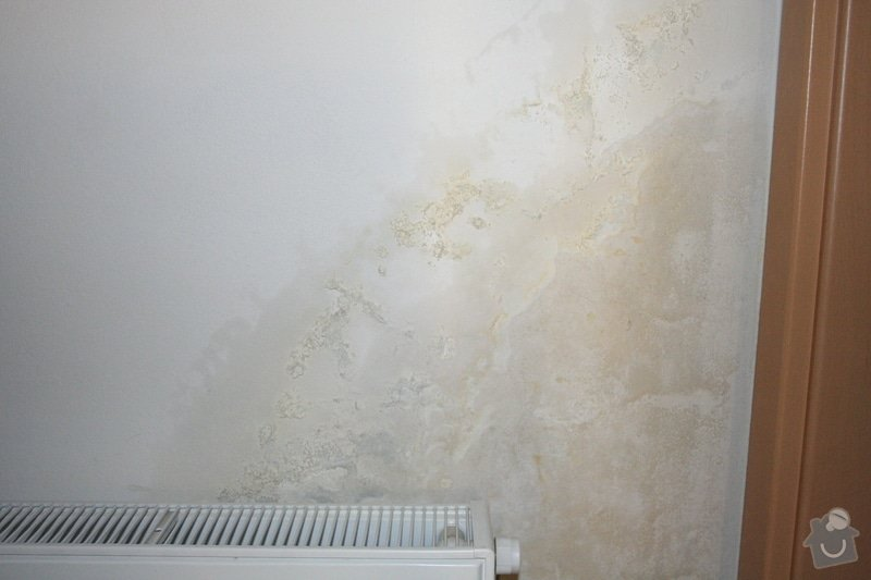 Plesnivějící stěna: IMG_7860